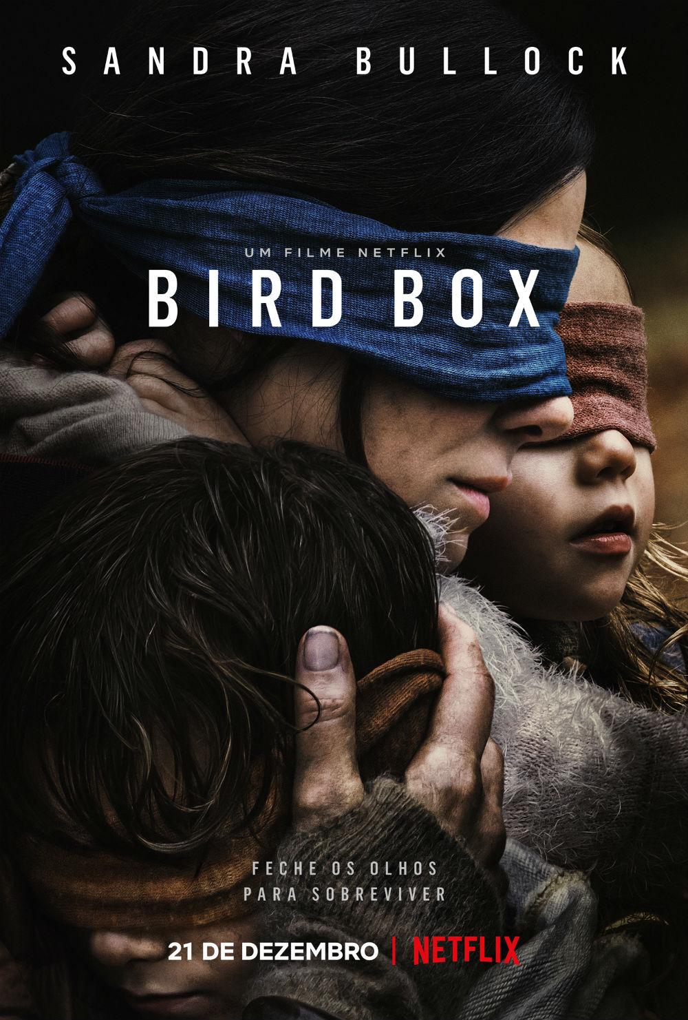 bird-box-netflix-resenha-poster.jpg